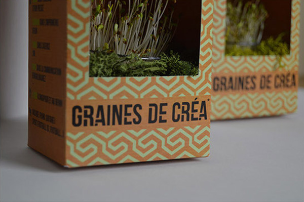 cv packaging de graines
